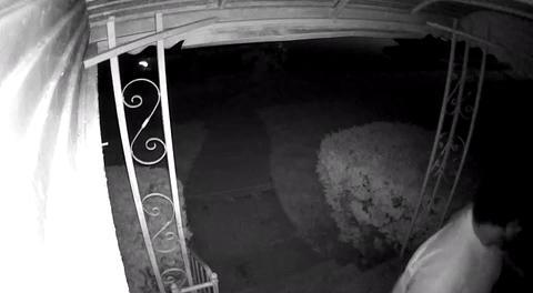 Detroit police release footage of home invasion