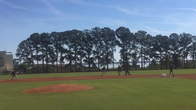 Tigers infielders take part in spring training drills